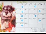 4月の休業日のご案内