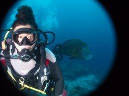 鹿児島ダイビングSBは春のキャンペーンを始めました