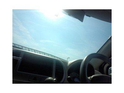 愛犬と夏の車でのお出かけ