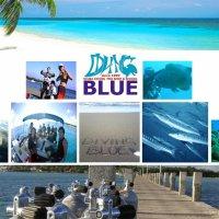 DIVING BLUE