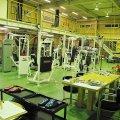 金沢トレーニングプラザ 「 アイアンホースジム 」