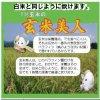 玄米美人(特別栽培のカルゲン農法コシヒカリから、渋味の表皮だけを剥きました)