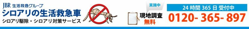 【庄原市のシロアリ駆除】 白蟻(しろあり)対策・白アリ(白あり)退治なら年中無休のプロが対応! 0120-365-897 庄原市のシロアリの生活救急車
