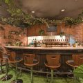 Private garden bar Green Spot