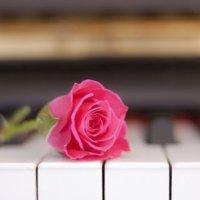 佐々木ピアノ教室 大泉学園と富士見台の個人ピアノレッスン
