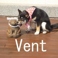 """Vent""""ヴィエント"""""""
