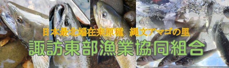 諏訪東部漁業協同組合