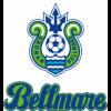 【今年もベルマーレの試合チケット入ってきました!!】湘南ベルマーレホーム戦メイン指定席チケット 全試合入荷しました!!
