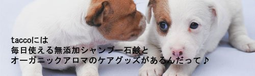 愛犬のためのシャンプー石鹸とアロマケアグッズ tacco