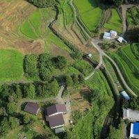 田舎暮らし満喫ヴィレッジ「天然村」