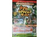 ダーツの大会と爬虫類の展示会