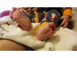 子育て足もみ塾! 3月クラス、4月クラス開講