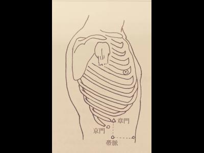 腰や下腹部の痛みに関係するツボ