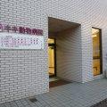大阪堺市のペットクリニック-キキ動物病院
