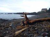 海岸のベンチが…編