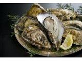北海道サロマ湖産 1年牡蠣 3kg と1年牡蠣むき身 500gセット
