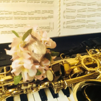 音楽教室きゅあ