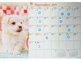 9月の休業日のご案内