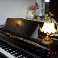 鈴木ピアノ教室