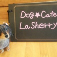 Dog★Cafe La Sherry