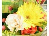 春のお便り~嬉しい報告(*^_^*)