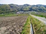 汲み上げた地下水は水路を通って田へ…。
