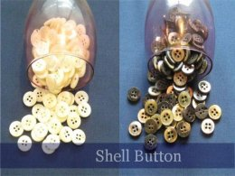 【 Shell Button 】 プレゼント!!