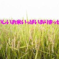 (有)荒金米穀