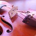 ヴァイオリン教室 パルティータ