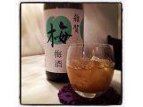 和歌山の「雑賀にごり梅酒」入荷!