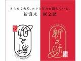 新潟県から新しいお米が誕生です。