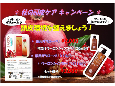 【秋の頭皮ケアキャンペーン】