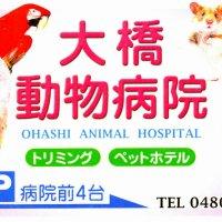 大橋動物病院(幸手市)