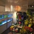 岩嵜商店(イワサキ商店)