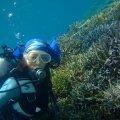 石垣島ダイビングショップ海のメロディーIN北部