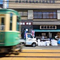 鎌倉魚市場