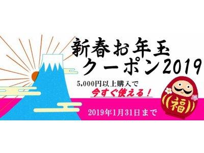 WEB限定! 2019 新春お年玉クーポン プレゼント!