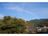 ★ 雪の虹♪