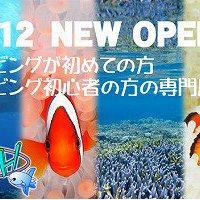 初心者専門ダイビングサービスSUN FISH石垣島