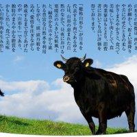 山形牛1頭買い 焼肉富貴