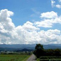 田舎暮らし不動産専門 益子町のふるさと情報センター