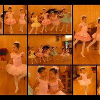 リーフレットミューズバレエ教室