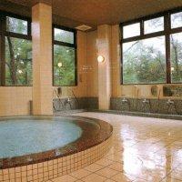 山の湯  (日帰り入浴・宿泊・宴会・等々にお気軽にご利用できます)