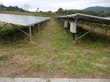 太陽光発電所の草刈作業、メガソーラーの除草作業