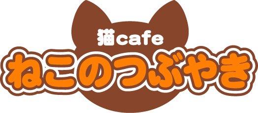 猫カフェ ねこのつぶやき
