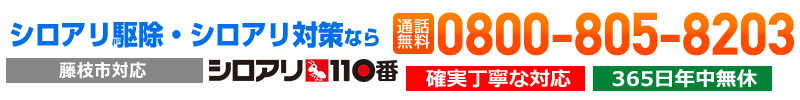 藤枝市のシロアリ駆除は平米1,200円から対応!シロアリ110番
