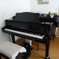 松田音楽教室