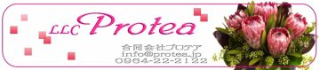 Protea Shopping Site 「健康館」