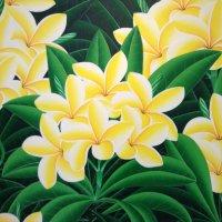 Aloha Hula-pixies ( アロハフラピクシーズ )