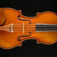 古賀弦楽器